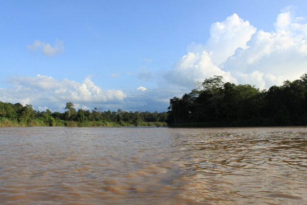 Kibatangan River, Sabah, Malaysia