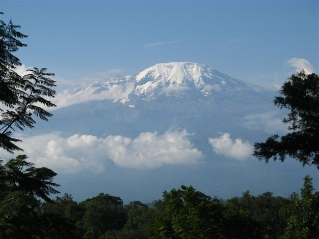 African safaris, tanzania wildlife and kilimanjaro climbing