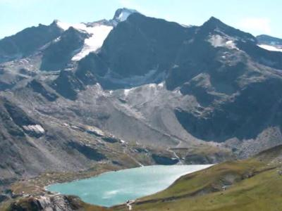 Montagne, volpi e marmotte